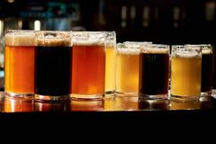 Different sorts of beer in bar. Variety of different sorts of beers in pub. Assorted drinks for tasting Royalty Free Stock Image