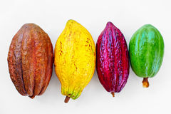 Different sorts of colorful cocoa pods on white Royalty Free Stock Image
