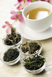 Different sorts of green tea and cup Stock Images