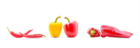 Different sorts of hot peppers in all colors, shapes and sizes. Chilly peper icons. Vector Illustrations. Different sorts of hot peppers in all colors, shapes Stock Photo