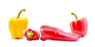 Different sorts of hot peppers in all colors, shapes and sizes. Chilly peper icons. Vector Illustrations. Different sorts of hot peppers in all colors, shapes Stock Photography