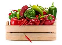 Different sorts of pepper. Different sorts of pepper on white background royalty free stock photo