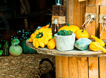 Different Sorts of Pumpkins. On a wooden rounded Table for fall concepts stock photos