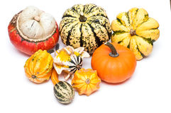 Different sorts of pumpkins. On a white background royalty free stock images