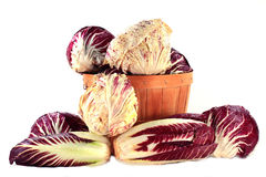 Different sorts Radicchio in bushel and on pile Royalty Free Stock Photography
