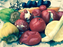 Different sorts of rotten fruit and vegetables Stock Photography