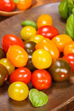Baby plum tomatoes Royalty Free Stock Image