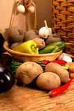 Different sorts of vegetables Royalty Free Stock Photo