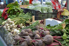 Different Sorts of Vegetables on Market royalty free stock images