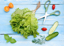 Different sorts of vegetables for salad. Stock Photo