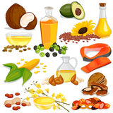 Different Sources of Edible Oil Collection Stock Images