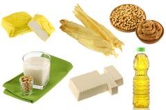 Different Soybean (Soya beans) Products. Yellow Tofu, Tofu Skin, Miso Paste, Soy Milk, Soft Momen (Cotton Tofu), Soybean oil Royalty Free Stock Photos