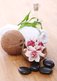 Different spa items Royalty Free Stock Photos