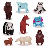 Different species of bears set, wild bears and toys furry bear characters cartoon vector Illustrations. On a white background Royalty Free Stock Images
