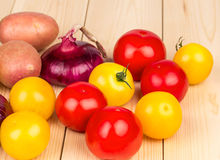 Different species of tomatoes Stock Images