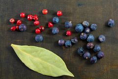 Different spice berries. Different spice berries with laurel on a dark wooden background royalty free stock photos