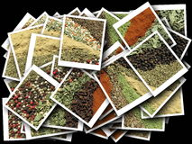 Different spice pattern stock photography