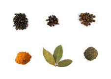 Different spices Stock Images