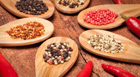 Different spices Royalty Free Stock Photos
