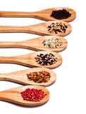 Different spices Royalty Free Stock Image