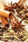 Different spices assortment: cinnamon, cardamom, pepper Stock Photography