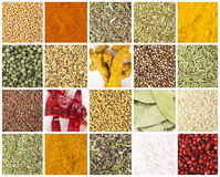 Different spices background Royalty Free Stock Images