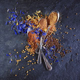 Different spices background. Some spoons with different spices stock image