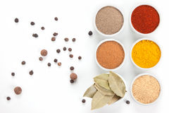 Different spices in bowls on white. royalty free stock image