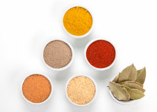 Different spices in bowls  on white. Stock Photos