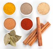 Different spices in bowls on white. stock images