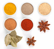Different spices in bowls  on white. Royalty Free Stock Photo