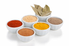 Different spices in bowls  on white. Royalty Free Stock Images