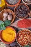Different  spices Royalty Free Stock Images