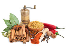 Different spices and herbs  on white Royalty Free Stock Images