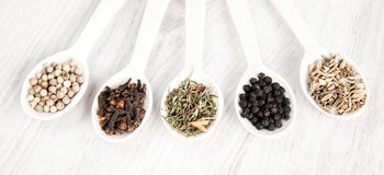 Different spices and herbs in wooden spoons on white table background. Black and white pepper, clove, savory, fennel seeds. Royalty Free Stock Images