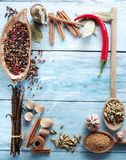 Different spices on old wood. royalty free stock photo