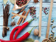 Different spices. Stock Photos