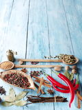 Different spices. Royalty Free Stock Photos