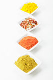 Different spices in a row Royalty Free Stock Photo