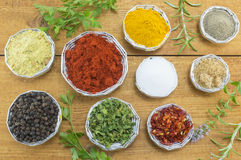 Different spices in shiny bowls Royalty Free Stock Photo