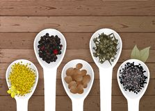Different spices in spoons Royalty Free Stock Image