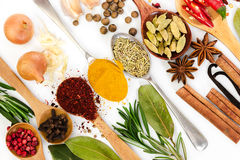 Different spices in spoons on white background. Royalty Free Stock Image