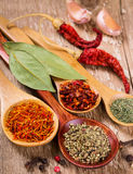 Different spices in the spoons Royalty Free Stock Photo
