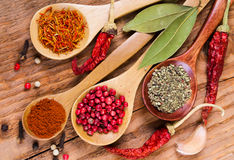 Different spices in the spoons Royalty Free Stock Photography