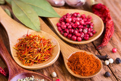 Different spices in the spoons Royalty Free Stock Image