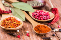 Different spices in the spoons Royalty Free Stock Images