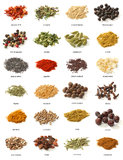 Different spices on white background.