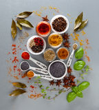 Different spices on a white background Royalty Free Stock Photography