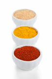 Different spices in white bowls isolated on white background. Stock Image