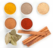 Different spices in white bowls  on white. Stock Photos